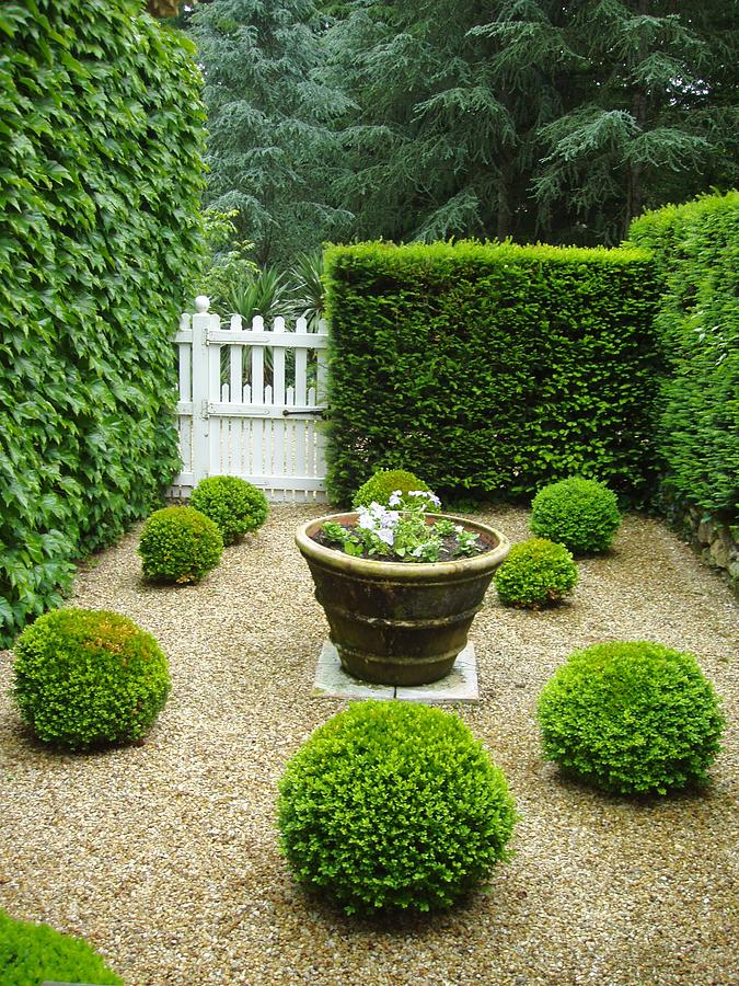 French garden v by wendy uvino for Small french courtyard gardens