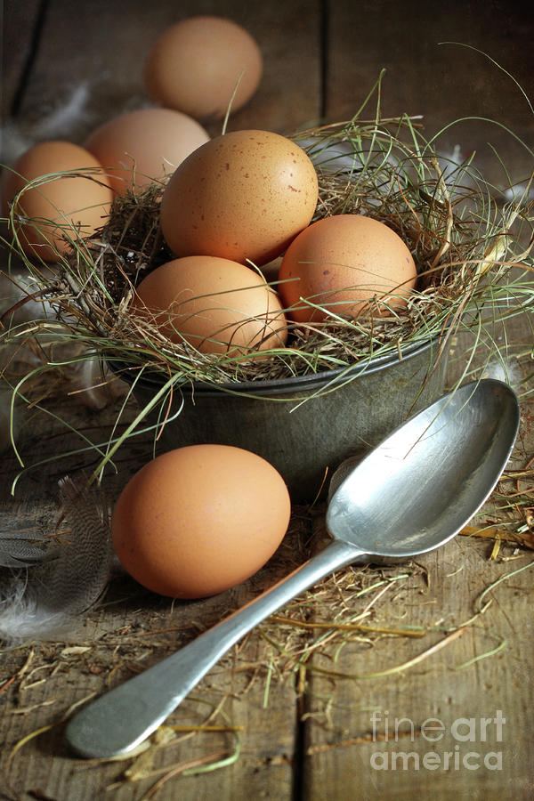 Fresh Brown Eggs In Old Tin Container With Spoon  Photograph