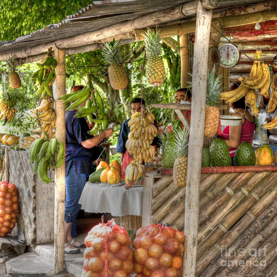 Fresh Fruits For The Day Photograph