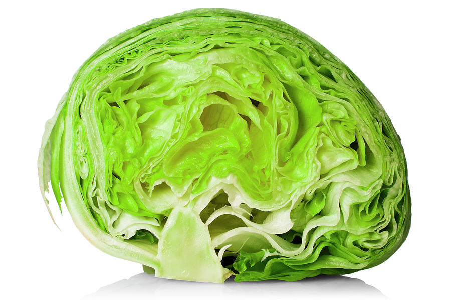 Fresh Iceberg Lettuce Cut In Half PhotographIceberg Lettuce Drawing