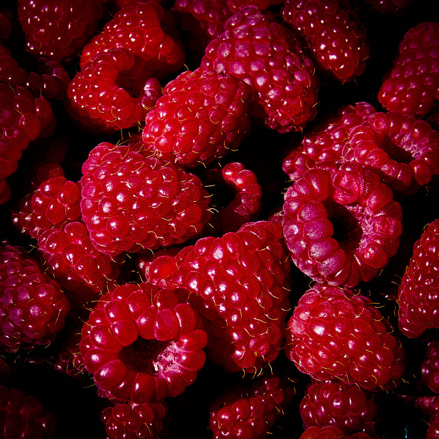 fresh picked raspberries by david patterson