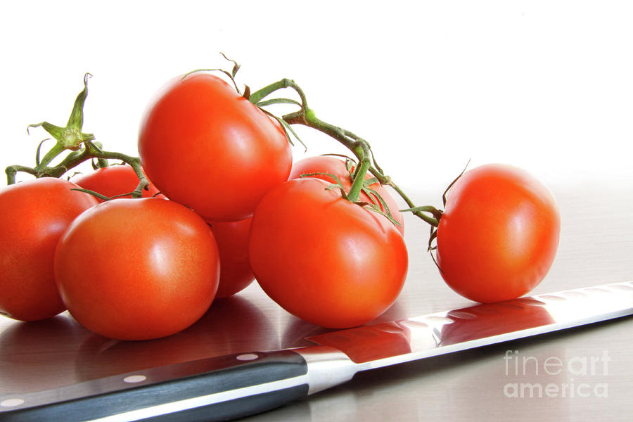 Fresh Ripe Tomatoes On Stainless Steel Counter Photograph  - Fresh Ripe Tomatoes On Stainless Steel Counter Fine Art Print