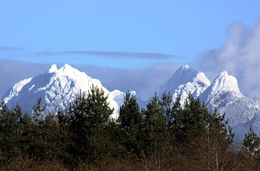 Fresh Snow On Golden Ears Photograph
