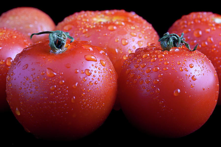 Fresh Tomatoes Photograph  - Fresh Tomatoes Fine Art Print
