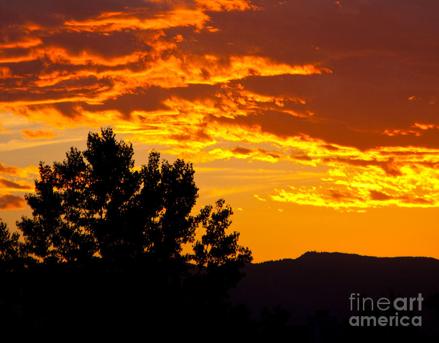 Sunset Photograph - Friday Night Lights by Dana Kern