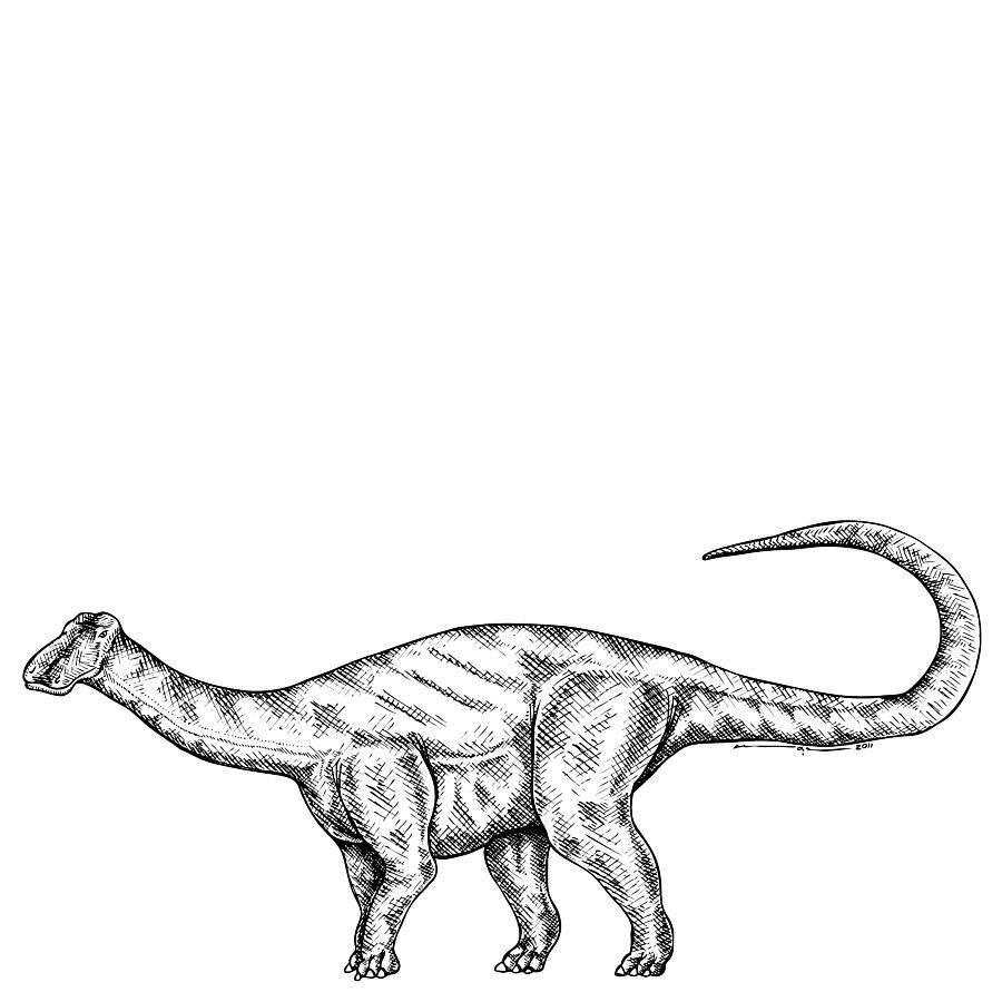 Friendlysaurs - Dinosaur Drawing