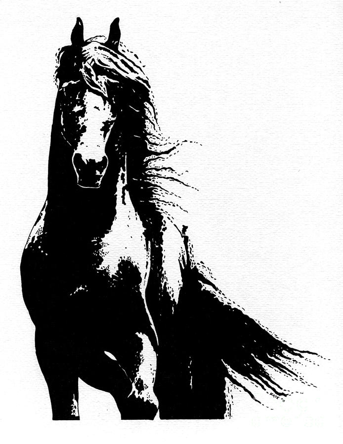 Friesian Horse Drawing  - Friesian Horse Fine Art Print