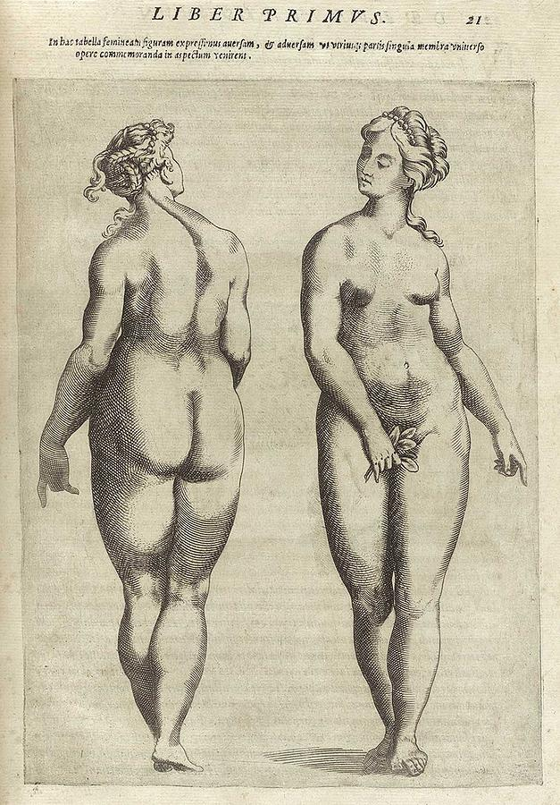 Front And Back View Of An Idealized Photograph