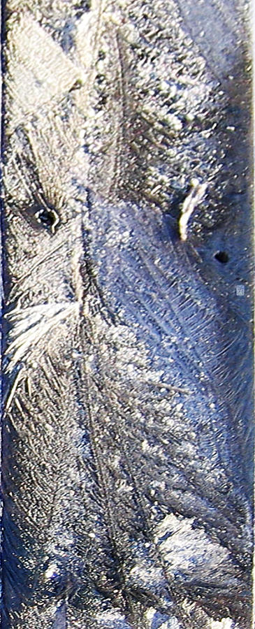 Frost Owl Digital Art  - Frost Owl Fine Art Print