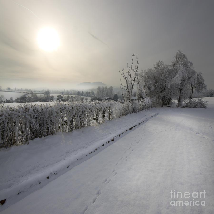 Frozen Britain Photograph