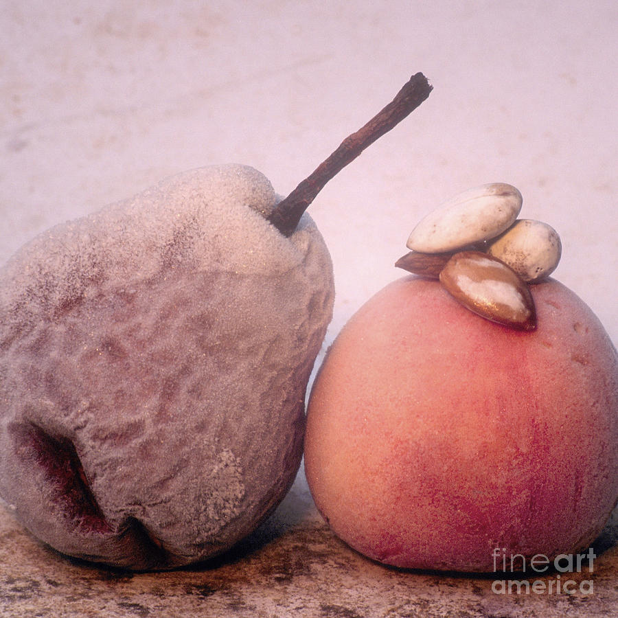 Composition Photograph - Frozen Fruits by Bernard Jaubert