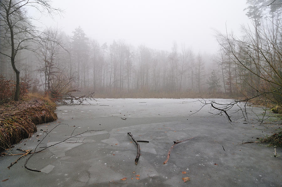 Frozen Lake In Winter Photograph