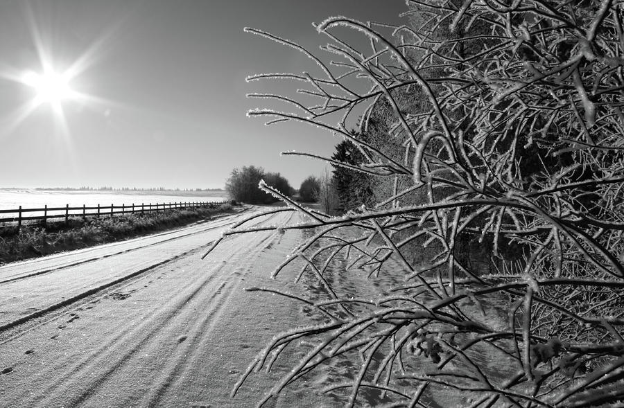 Frozen Road Photograph  - Frozen Road Fine Art Print