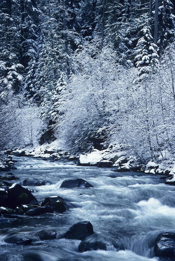Frozen Salt Creek Photograph