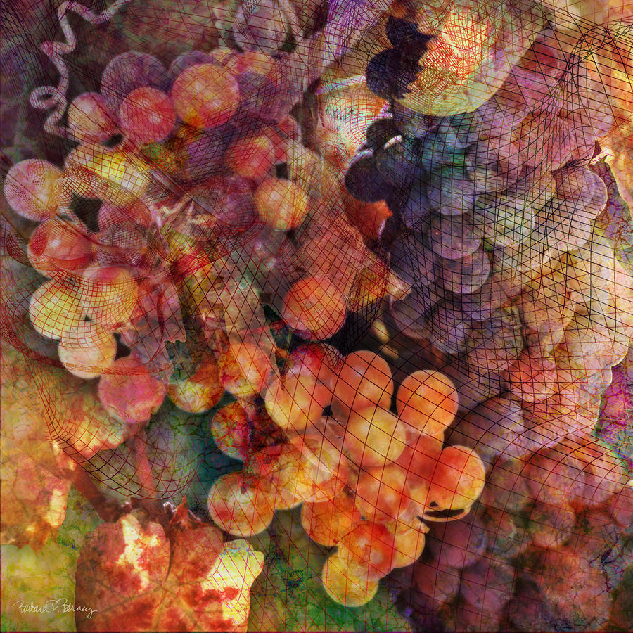Fruit Of The Vine Digital Art
