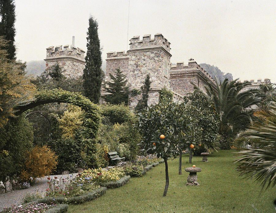 Fruit Trees Grow In The Gardens Of This Photograph