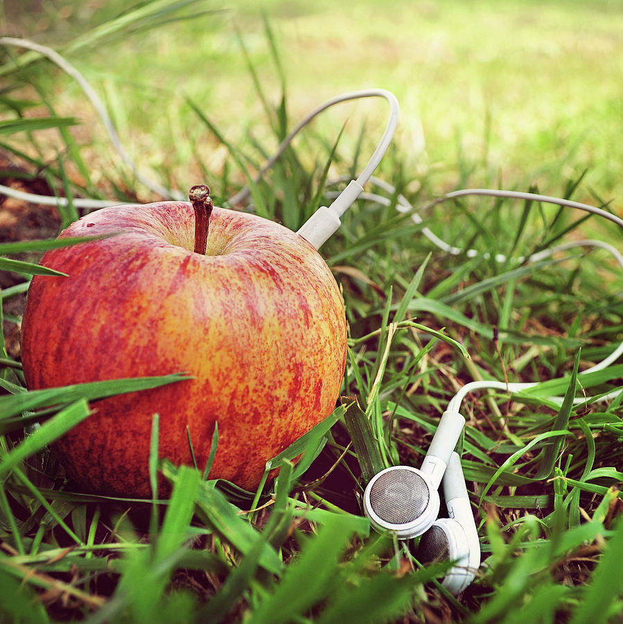 Fruity Tunes Photograph