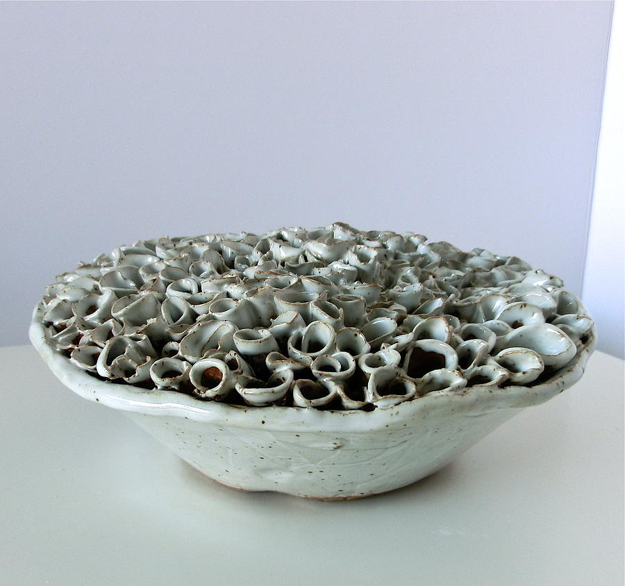 Full Bowl Ceramic Art  - Full Bowl Fine Art Print