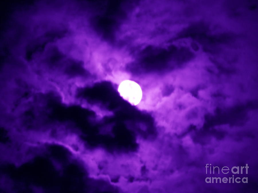 Full Moon In Purple Haze Photograph By Renee Trenholm