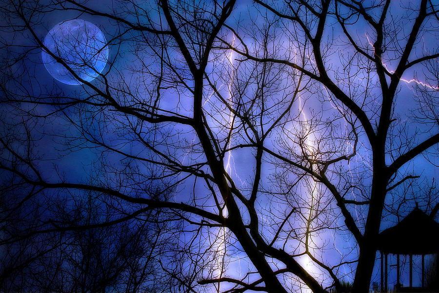 Full Moon Lighting Digital Art