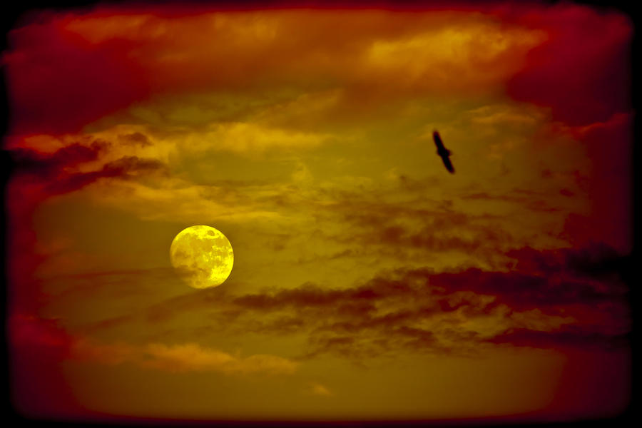 Full Moon Red Sky Photograph