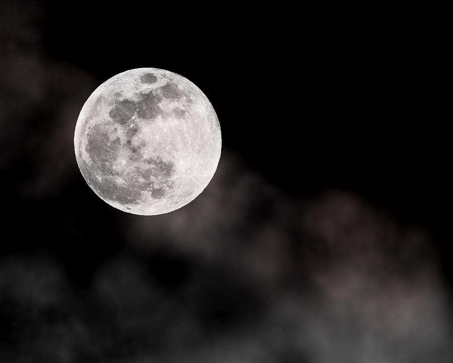 Full Wolf Moon Photograph  - Full Wolf Moon Fine Art Print