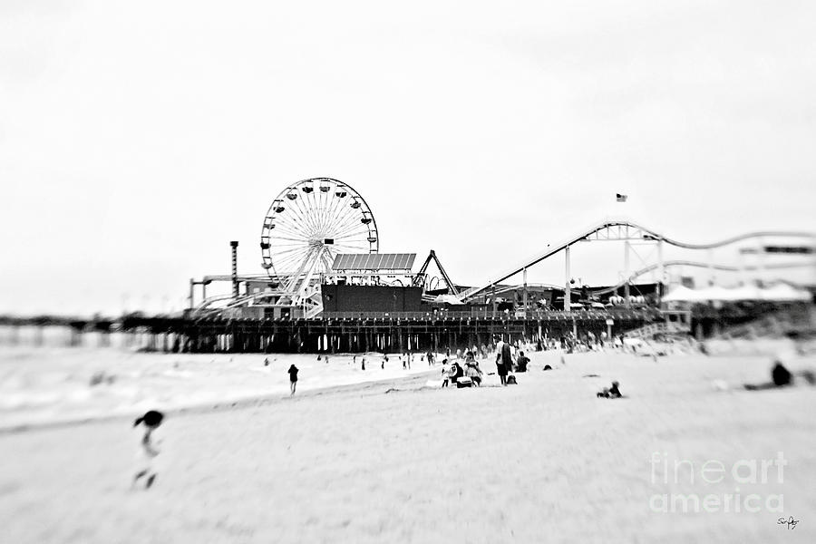 Fun At The Beach Photograph  - Fun At The Beach Fine Art Print