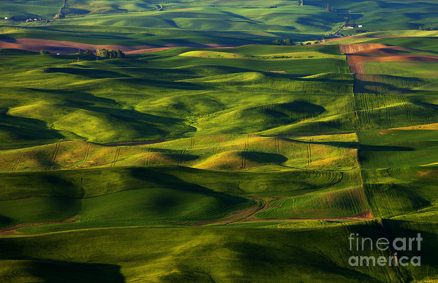 Furrows And Folds Photograph  - Furrows And Folds Fine Art Print
