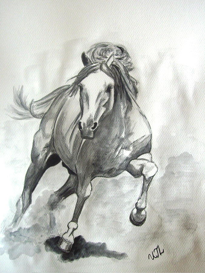Galloping Horse Painting  - Galloping Horse Fine Art Print