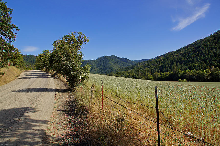 Galls Creek Road In Southern Oregon Photograph