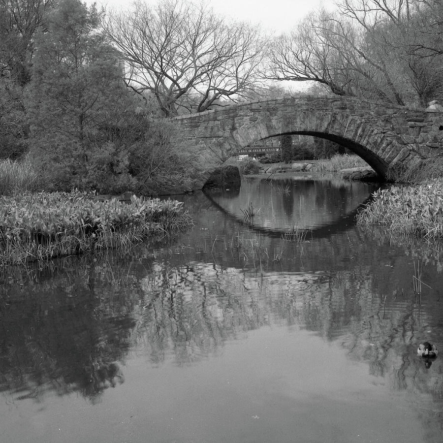 Gapstow Bridge - Central Park - New York City Photograph