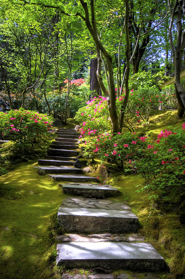 garden path is a photograph by brad granger which was uploaded on