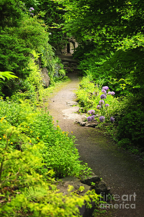 Garden Photograph - Garden Path by Elena Elisseeva