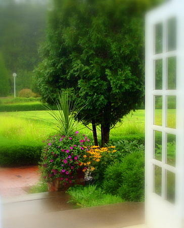Garden Rain Photograph