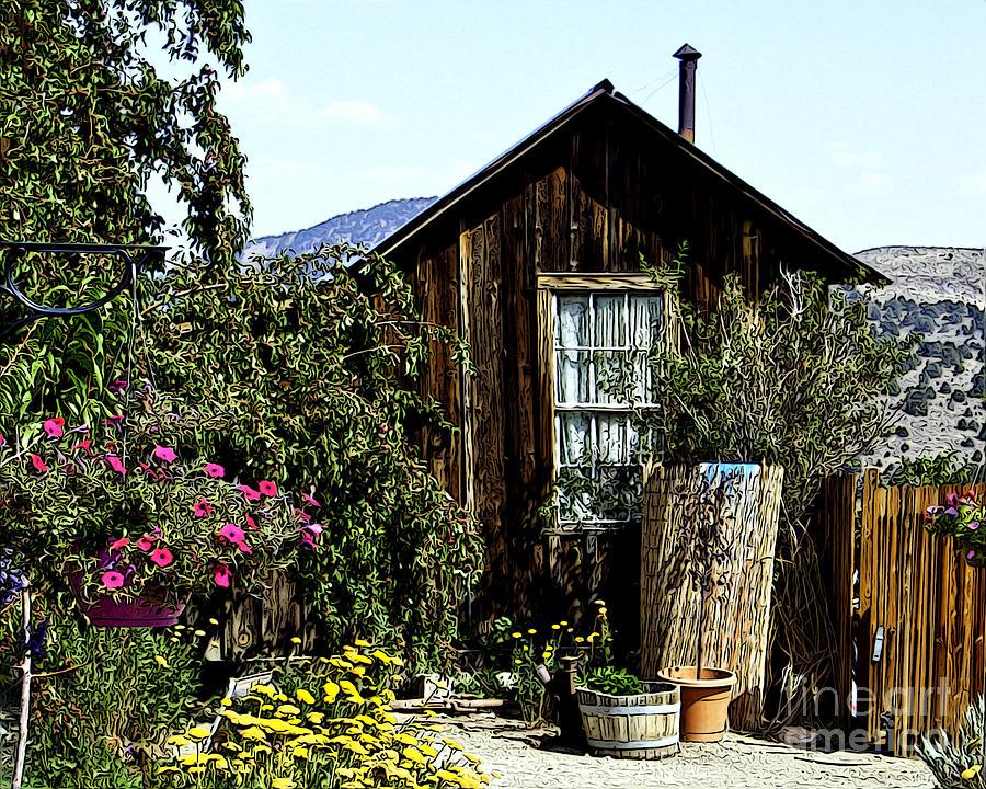 garden shack photograph by anne raczkowski