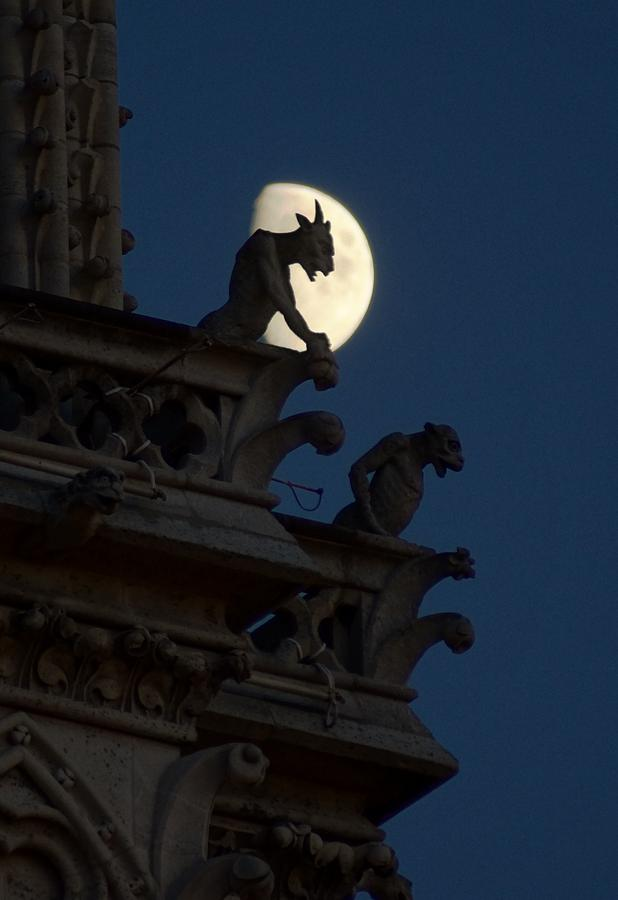 Gargoyle Night Watch Photograph  - Gargoyle Night Watch Fine Art Print