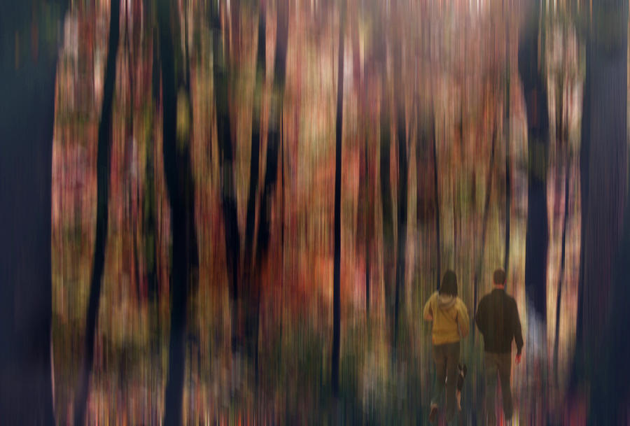 Gateway To A Dream Digital Art