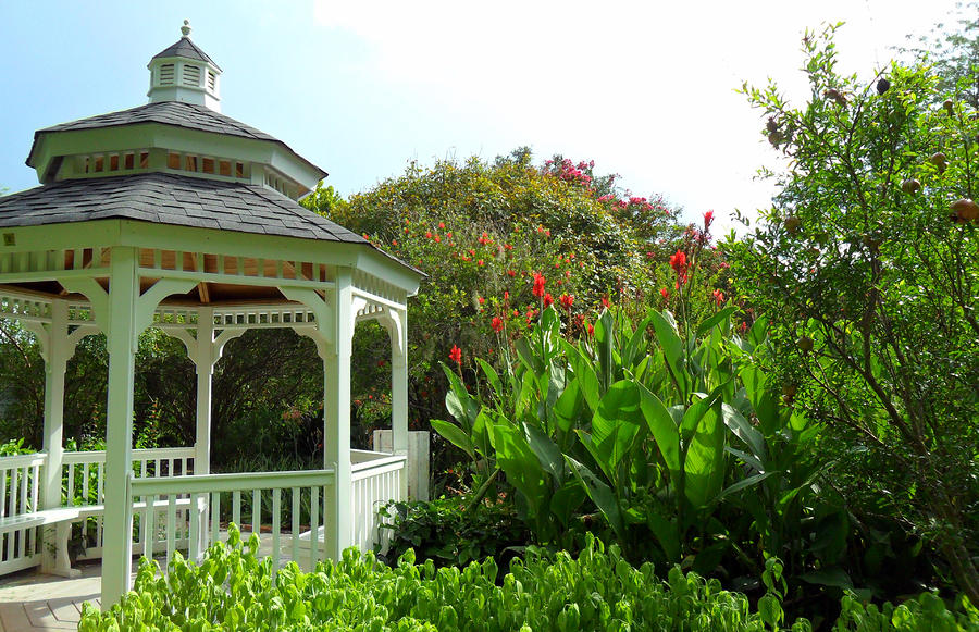 Gazebo Flower Garden Photograph