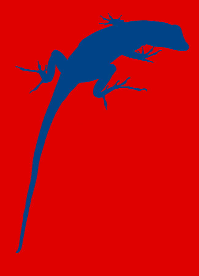 Gecko Silhouette Red Blue Photograph