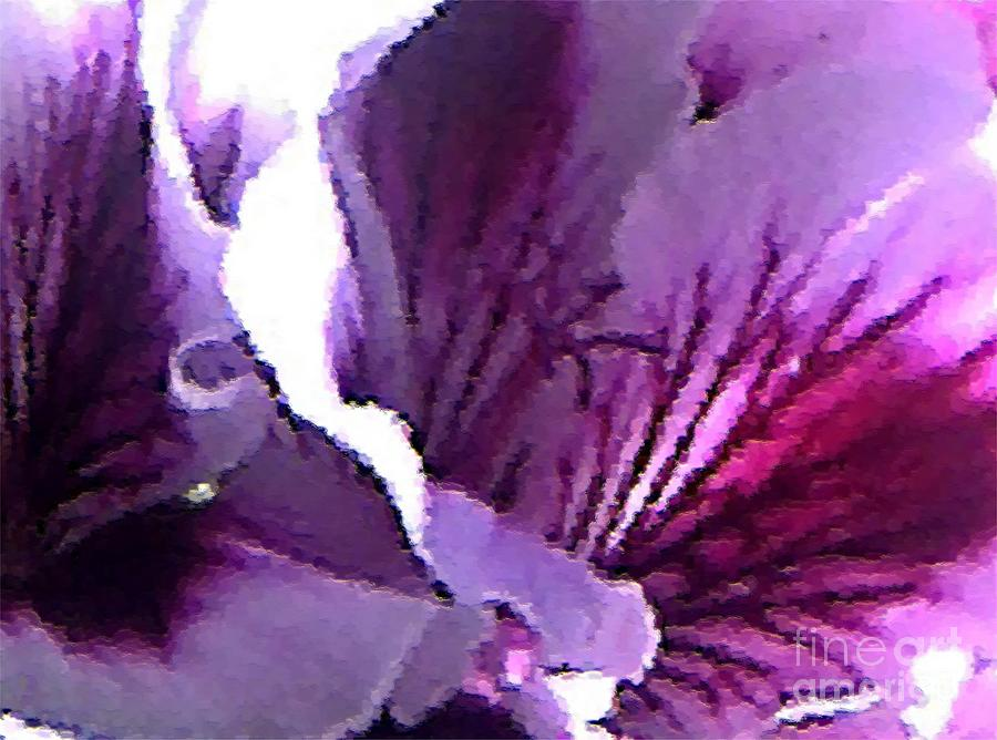 Geranium Close Up Painting  - Geranium Close Up Fine Art Print