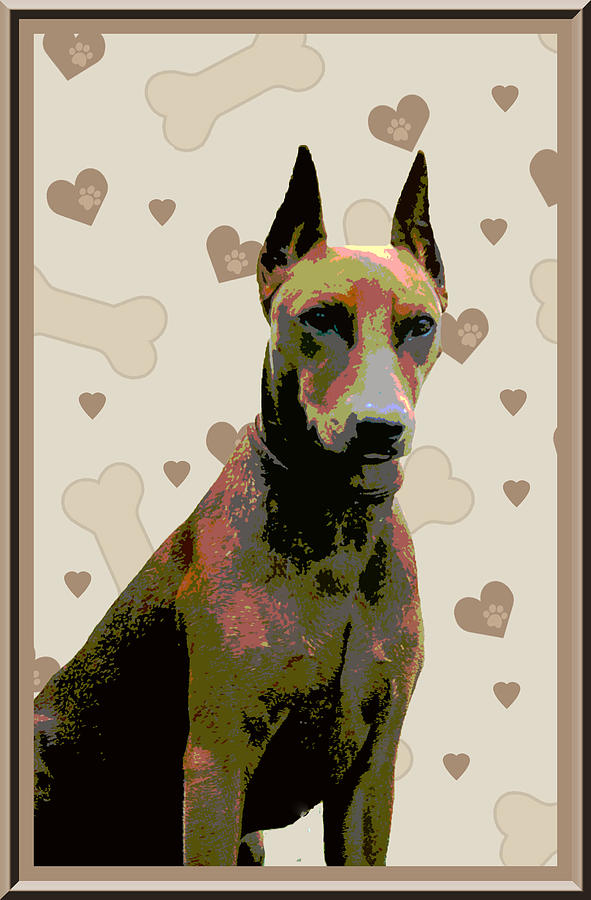 German Pinscher Photograph