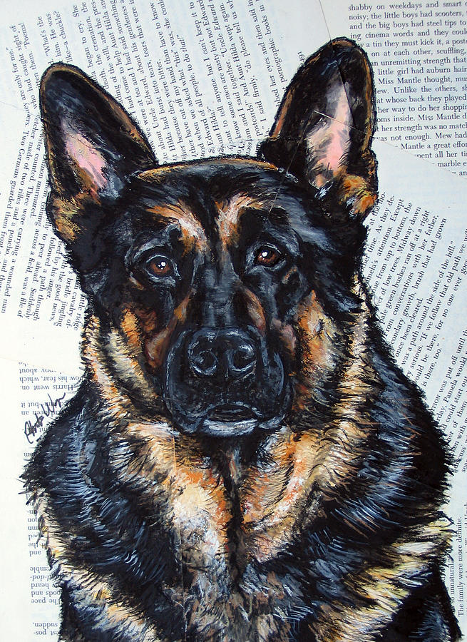 German Shepherd Headshot Painting  - German Shepherd Headshot Fine Art Print