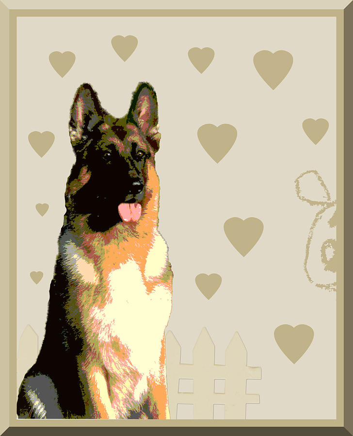 German Shepherd Photograph