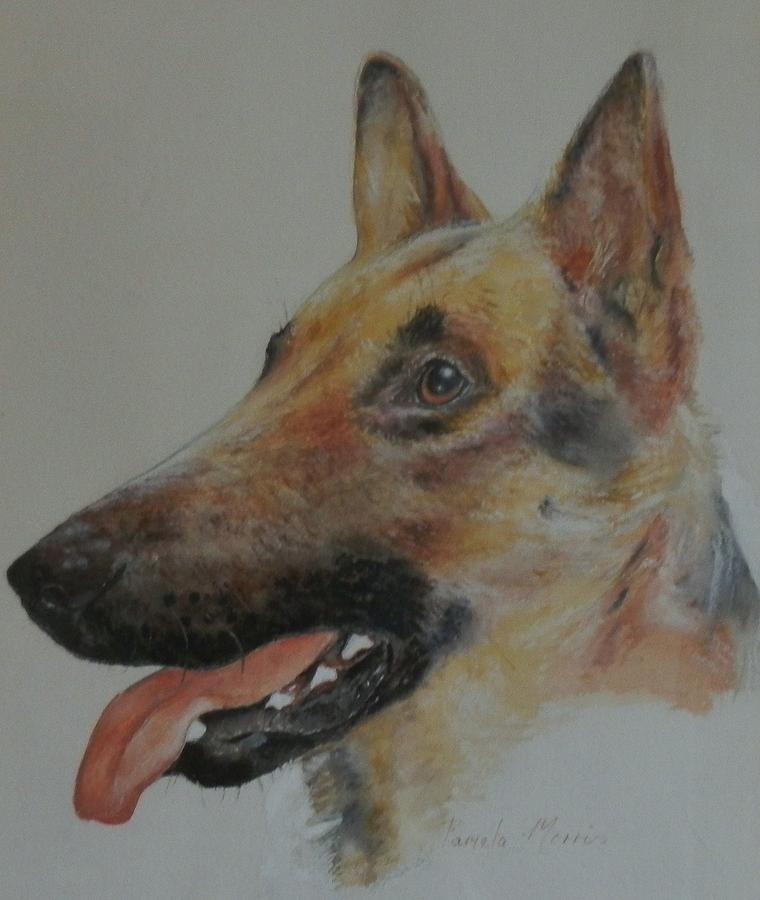 German shepherd painting german shepherd painting by pamela morris