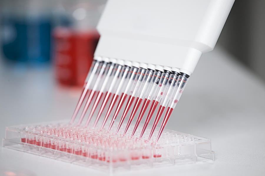 Germany, Bavaria, Munich, Multichannel Pipette Dispensing Red Reagent Into Test Tray For Medical Research Photograph