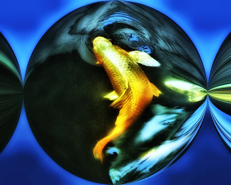 Ghost Koi Digital Art  - Ghost Koi Fine Art Print