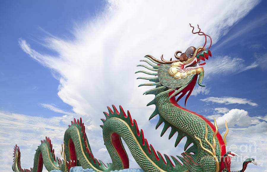 Giant Chinese Dragon  Photograph  - Giant Chinese Dragon  Fine Art Print