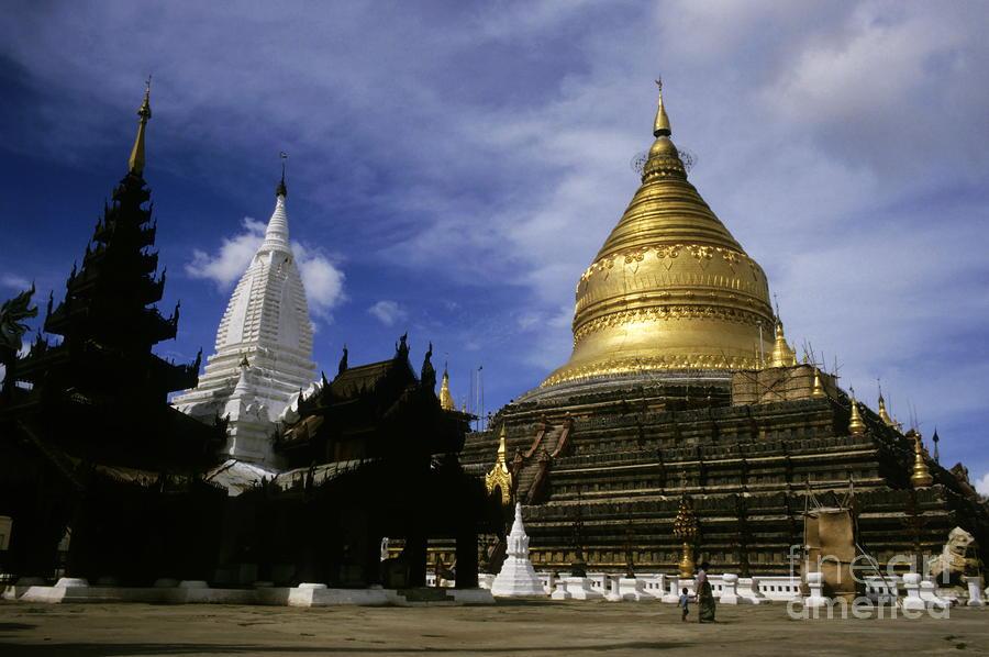 Gilded Stupa Of The Shwezigon Pagoda Photograph