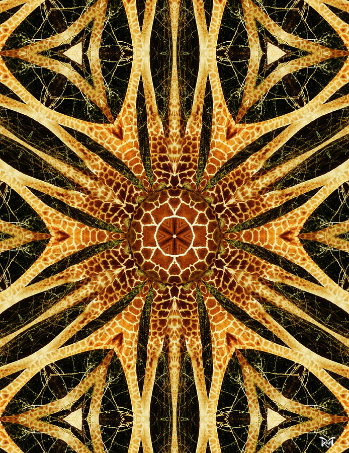 Giraffe Mandala I Digital Art
