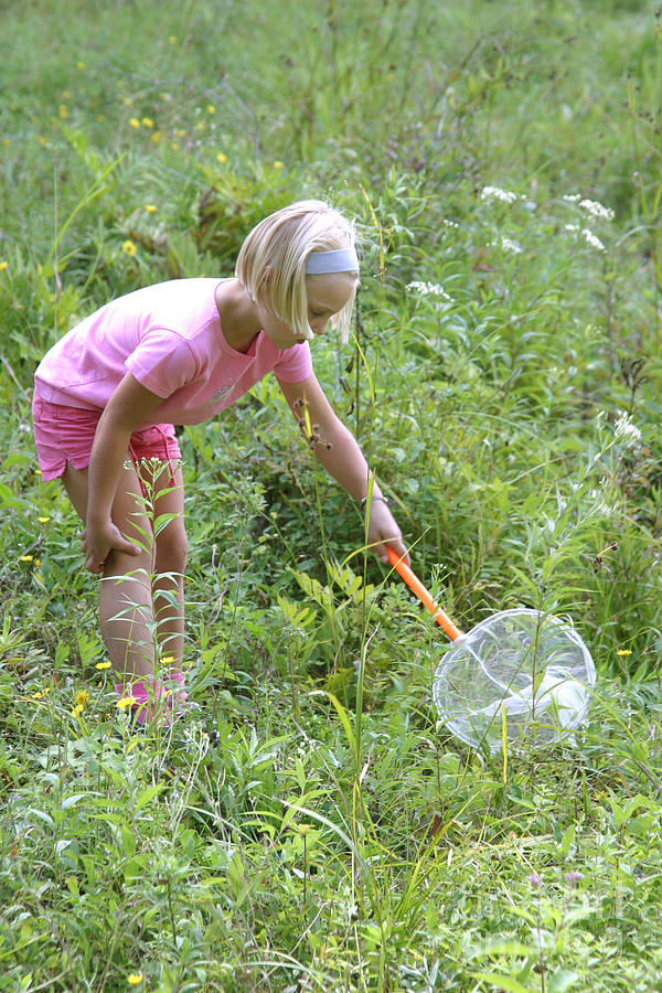Girl Collects Insects In A Meadow Photograph
